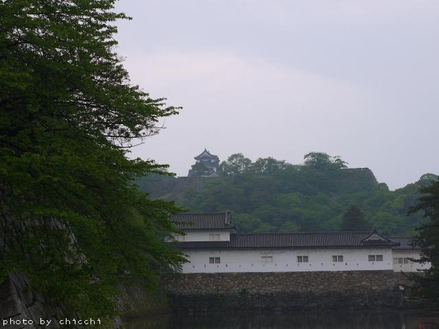 hikone-16.jpg