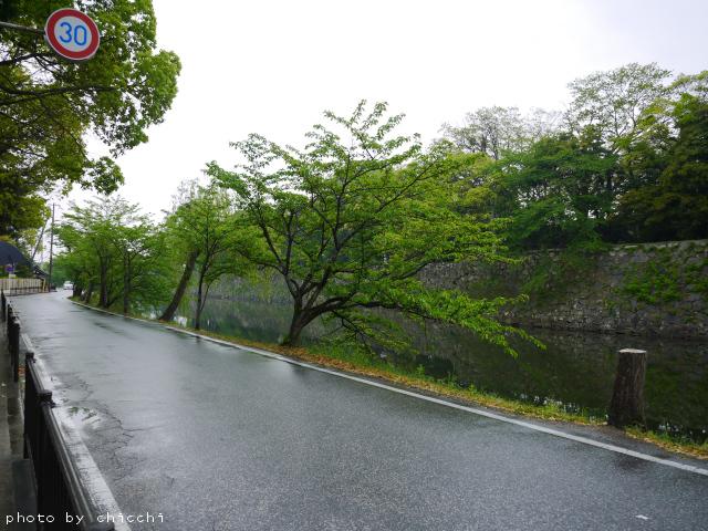 hikone-3.jpg