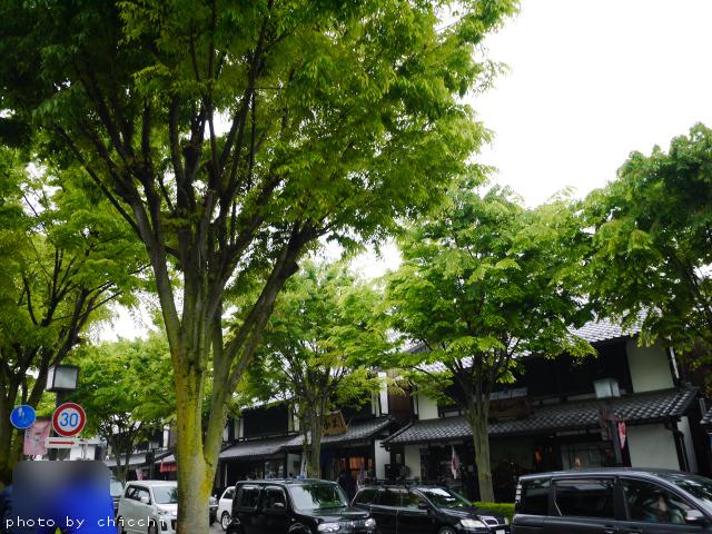 hikone-6.jpg