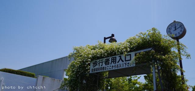 itamiskypark-1.jpg
