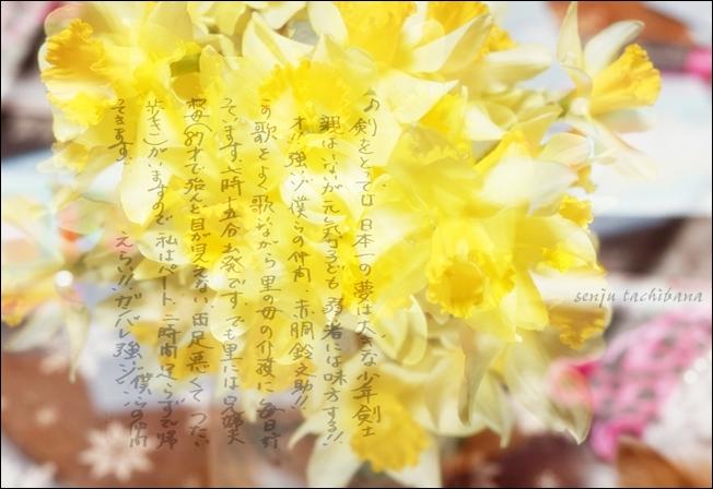 写真-(3)