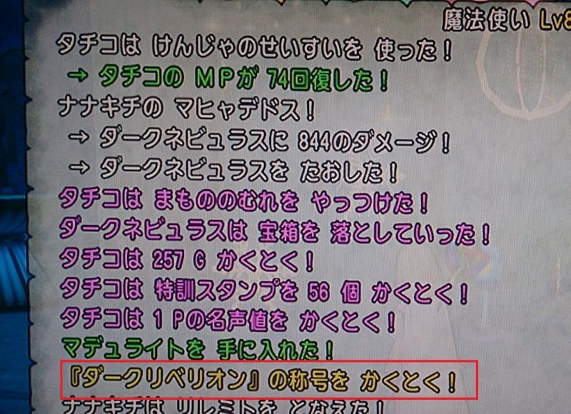 DSC_0505_convert_20140810185834.jpg