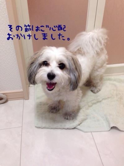 fc2blog_20140603084218cd0.jpg