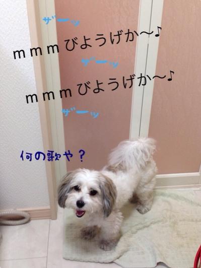 fc2blog_20140603084344630.jpg