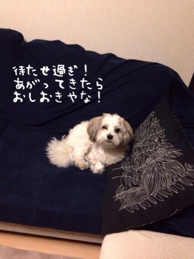 fc2blog_20140603084425694.jpg