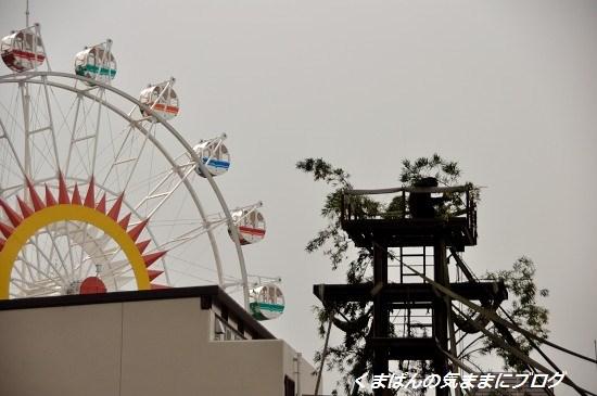 Nikon_20140309_142242.jpg