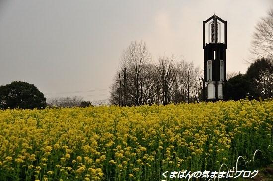 Nikon_20140309_145956.jpg
