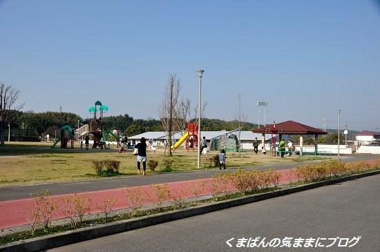 Nikon_20140315_161012.jpg