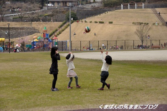 Nikon_20140316_134151.jpg