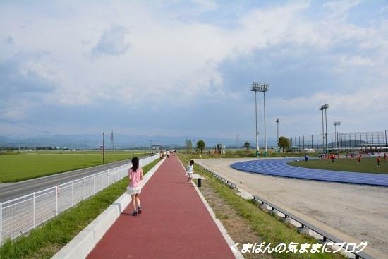 Nikon_20140426_151318.jpg