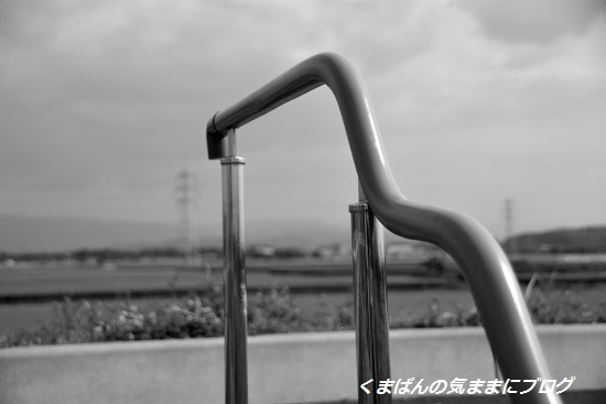 Nikon_20140426_152452.jpg