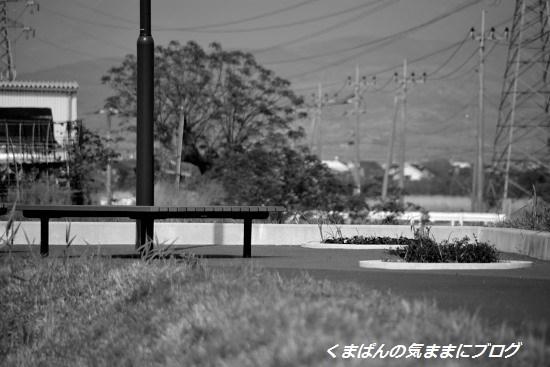 Nikon_20140426_152502.jpg