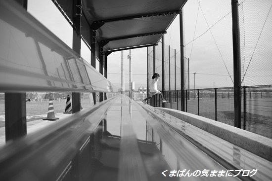 Nikon_20140426_155620_01.jpg