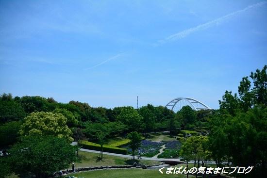 Nikon_20140511_125725.jpg