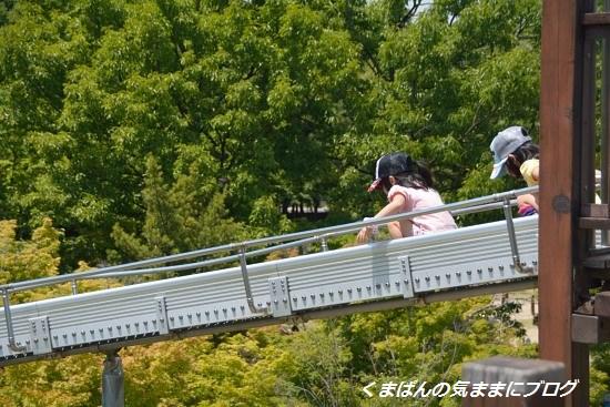 Nikon_20140511_125948.jpg