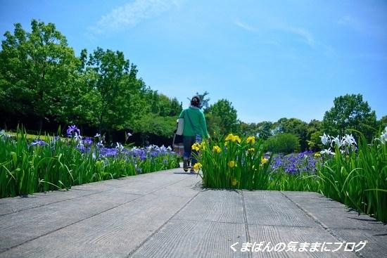 Nikon_20140511_130707.jpg