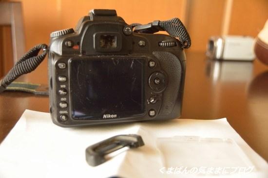Nikon_20140525_154725.jpg