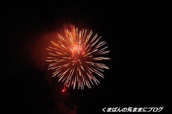 Nikon_20140727_204957.jpg