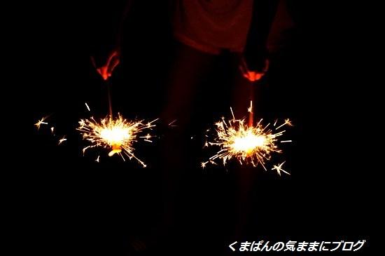 Nikon_20140801_193417.jpg