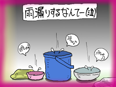 kumapan_amamori04-2.jpg