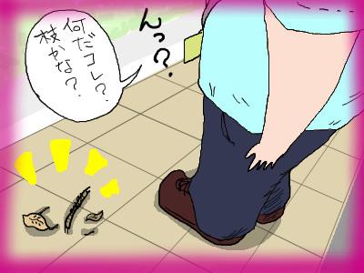 kumapan_mukaeda02.jpg