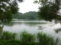 德興池(地元名称西湖)140825