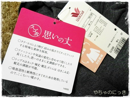 20140302思いの丈タグ