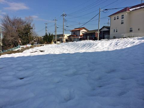 埼玉南部の大雪原!?