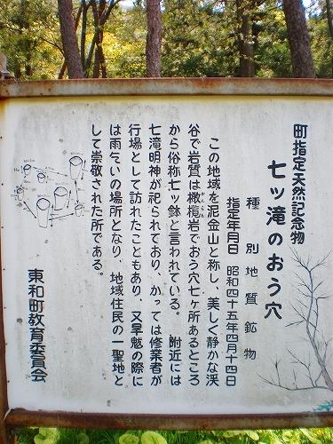 nntt01.jpg