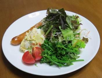 コーラルリーフ入り野菜サラダ