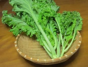 ピリピリナ収穫物