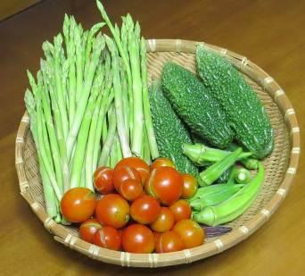 アスパラガス収穫物9月