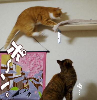 ぷぷがおさkにーd-d-dコピー