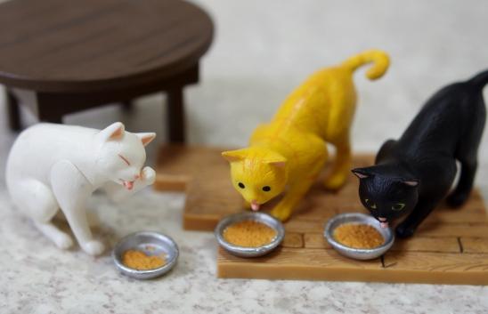 欲しいと思ってた猫ご飯があったーd0-0f-sdfdfdfd