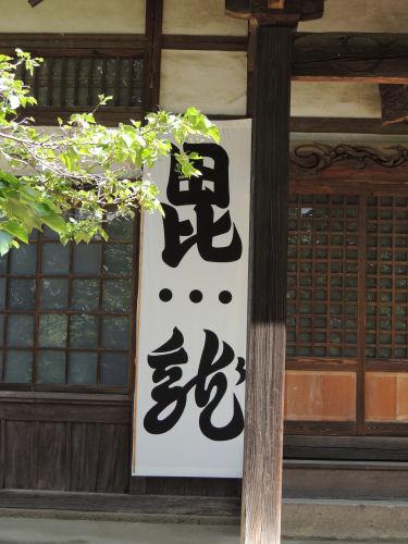 140529shinano19.jpg