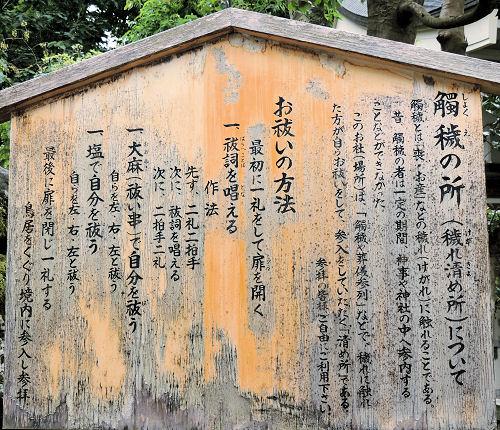 140805shirayama03.jpg