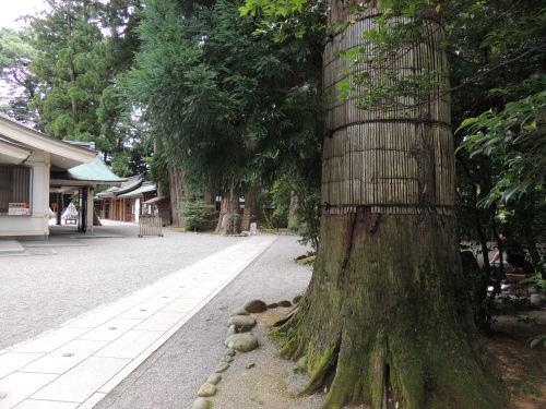 140805shirayama18.jpg