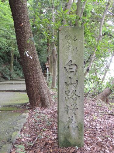 140805shirayama25.jpg