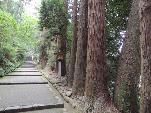 140805shirayama30.jpg