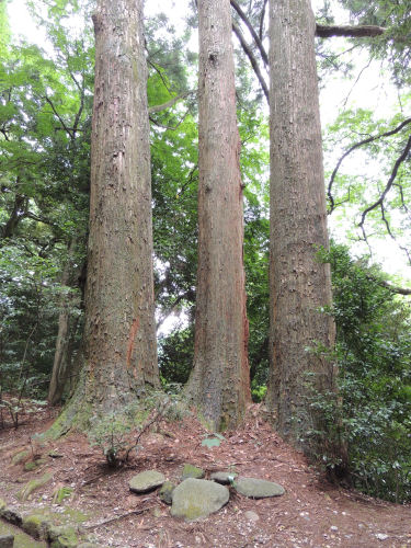140805shirayama31.jpg