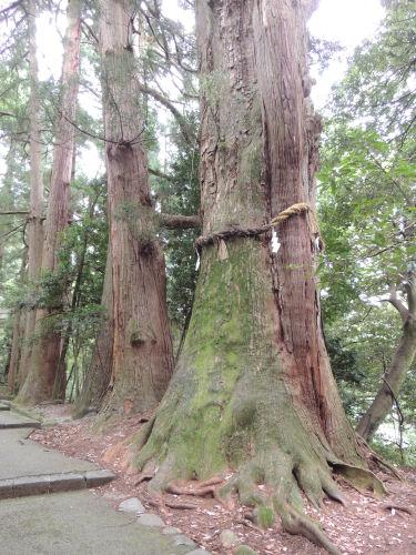140805shirayama33.jpg