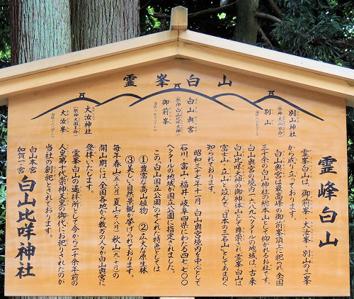 140805shirayama74.jpg