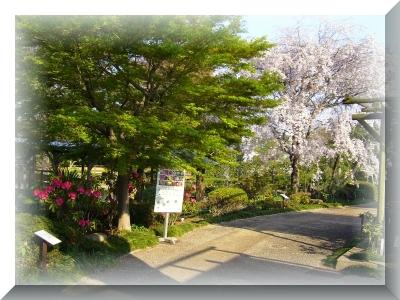 2014-04-15-05.jpg