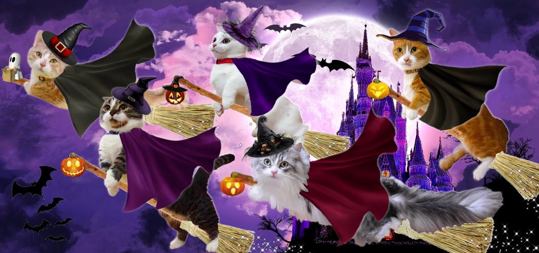 haunted-castle2014header.jpg