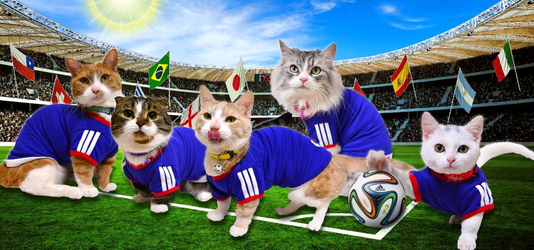 worldcup2014.jpg