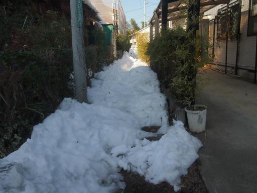 20140222・雪秩父1-03