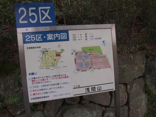 20140329・多磨植物1-24