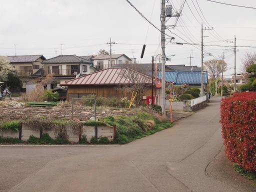20140405・金仙寺2-13