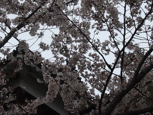 20140420・長野01-08