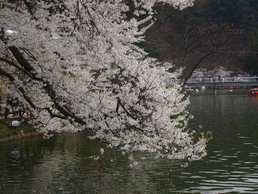 20140420・長野03-17